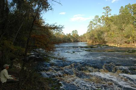 Big Shoals on the Suwannee River, Florida's largest rapids, White Springs, FL, 11/05