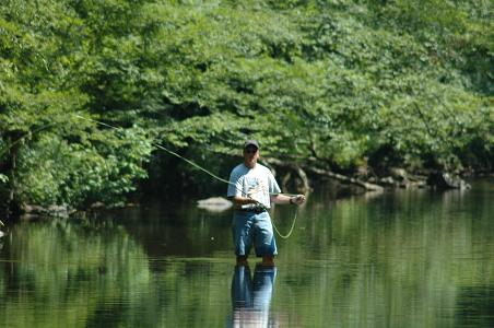 Fly Fishing, Citico Creek, Tellico Plains, TN, 08/05